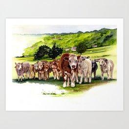 Herd It Throught the Grapevine Art Print