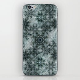Winter iPhone Skin