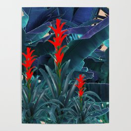 RED BROMELIAD FLOWERS & BLUE  JUNGLE LEAVES Poster