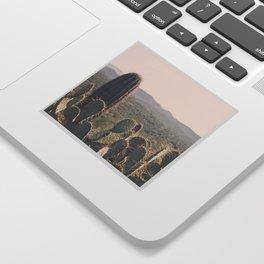 Arizona Cacti Sticker
