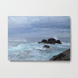 Land and Seascapes Metal Print