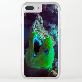 Moray Eel Clear iPhone Case