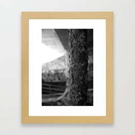 Urban Rust Miami Abandoned Marina Stadium in Key Biscayne Framed Art Print