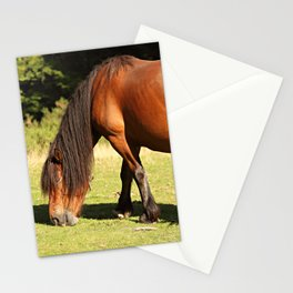 Horse eating Stationery Cards