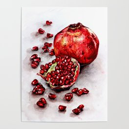 Red pomegranate watercolor art painting Poster