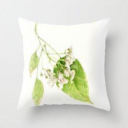 Catalpa Blossom 2017 Throw Pillow