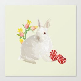 Rabbit and Peppermint Canvas Print