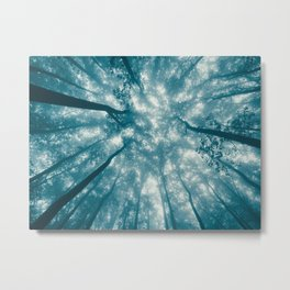 Smoky Mountain Summer Forest Teal - National Park Nature Photography Metal Print