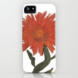 Sunset Sunflower: Helianthus Annuus iPhone Case