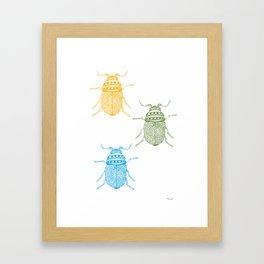 Beetle Illustration Print Framed Art Print