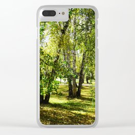signpost in the park. green summer background Clear iPhone Case