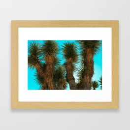 Joshua Trees on a Blue Sky Framed Art Print