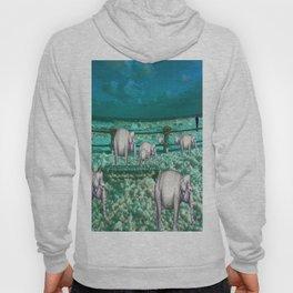 Elefantes en movimiento. Hoody