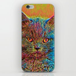 AnimalColor_Cat_ 027_by_JAMColors iPhone Skin
