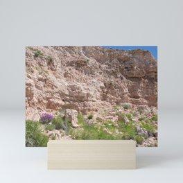 Texas Canyon Mini Art Print
