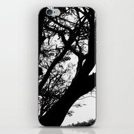 Dark Cementery Trree iPhone Skin