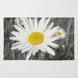 yellow columbine blossom, black white gray still life beautiful big floral pattern Rug