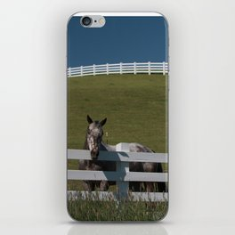 Horse in the Palouse iPhone Skin