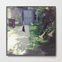 Chats Noirs, New Orleans kitties Metal Print