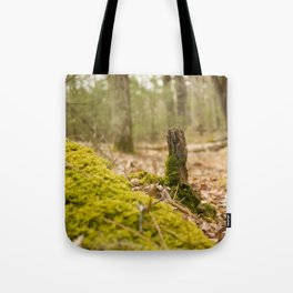 Mossy forest floor Tote Bag