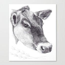 cow society Canvas Print