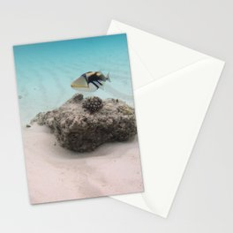 Tropical Maldives White Sand Lagoon Coral Fish Stationery Cards