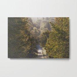 Spruce Ride Metal Print