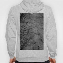Tree of black Hoody