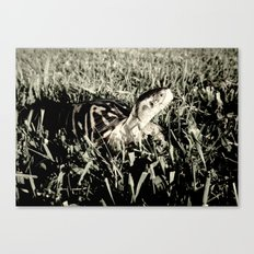 my sidekick Canvas Print