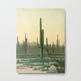 United States Geographical Surveys West of the One Hundredth Meridian - 1875 Cactus Desert Landscape Metal Print