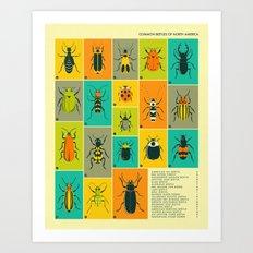 COMMON BEETLES OF NORTH AMERICA Art Print