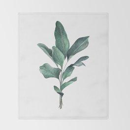 Calathea lutea Throw Blanket
