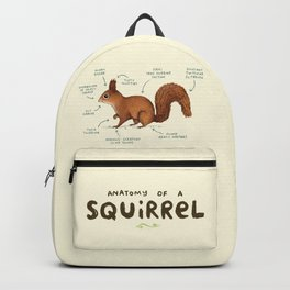 Anatomy of a Squirrel Backpack