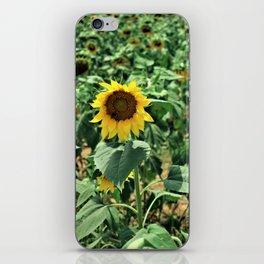 Flower No 6 iPhone Skin