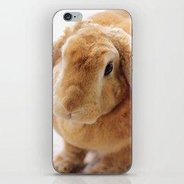 The Velveteen Rabbit iPhone Skin