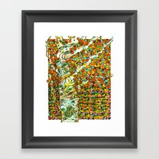 Autumn Aspen Framed Art Print