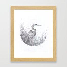 Heron Framed Art Print