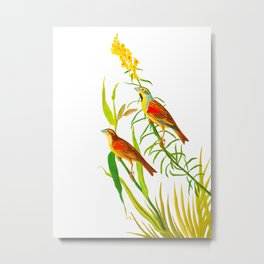 Birds & Yellow Flowers Metal Print