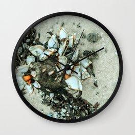 Sea Molluscs Wall Clock