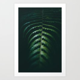 Nature Leaf Art Print