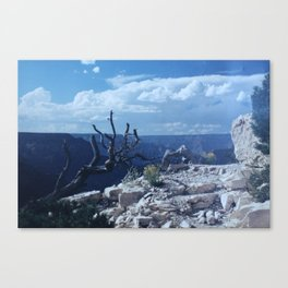 Grand Canyon - Wild Veda Canvas Print