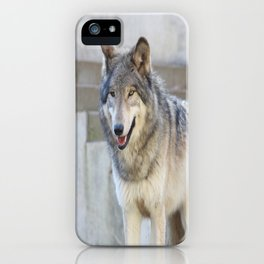 Alright, I'm ready iPhone Case