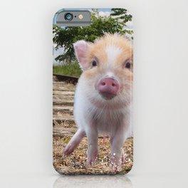 Railway PIG iPhone Case