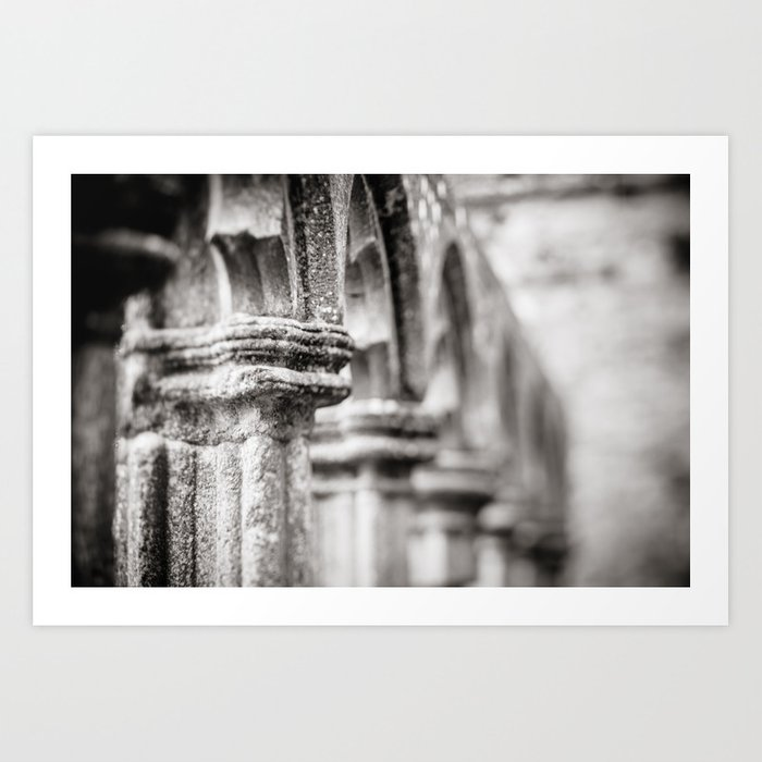 Pillars of Fore Abbey, Ireland  Art Print