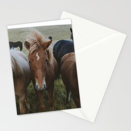 Horses on the road to Höfn Stationery Cards