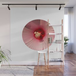 Pink Hibiscus Close-up Flower Photography Wall Mural