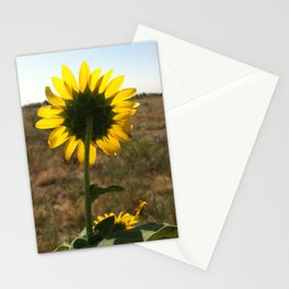 Light through the Sunflower Stationery Cards
