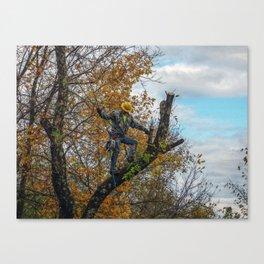 Tree Surgeon Canvas Print