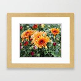 Color Theory, Orange Framed Art Print
