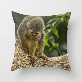 Monkey No. 1 Whatcha Got Down There Throw Pillow